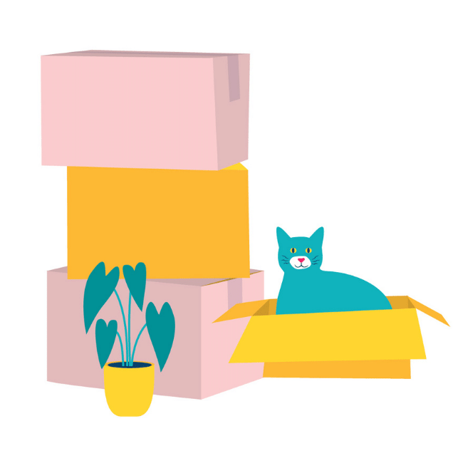 An illustration of the Conveyancing Hunter Valley - Oliver & Co. Conveyancing turquoise cat in an empty box with other empty boxes piled beside it.