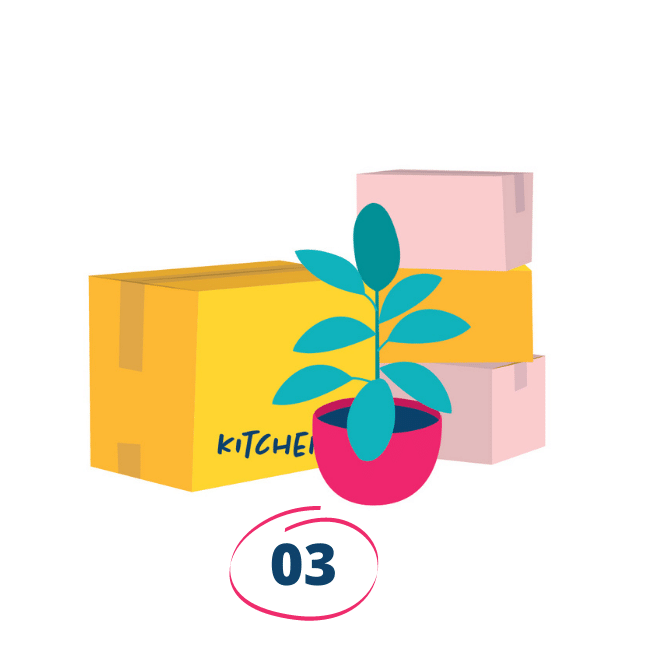 An illustration of moving boxes with a pot plant in front of it at Oliver & Co. Conveyancing